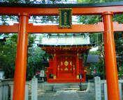 Kandainari712